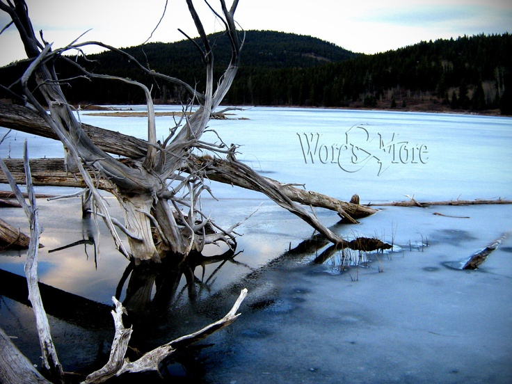cold lake  By Laura Kelsey - wordsmore.com