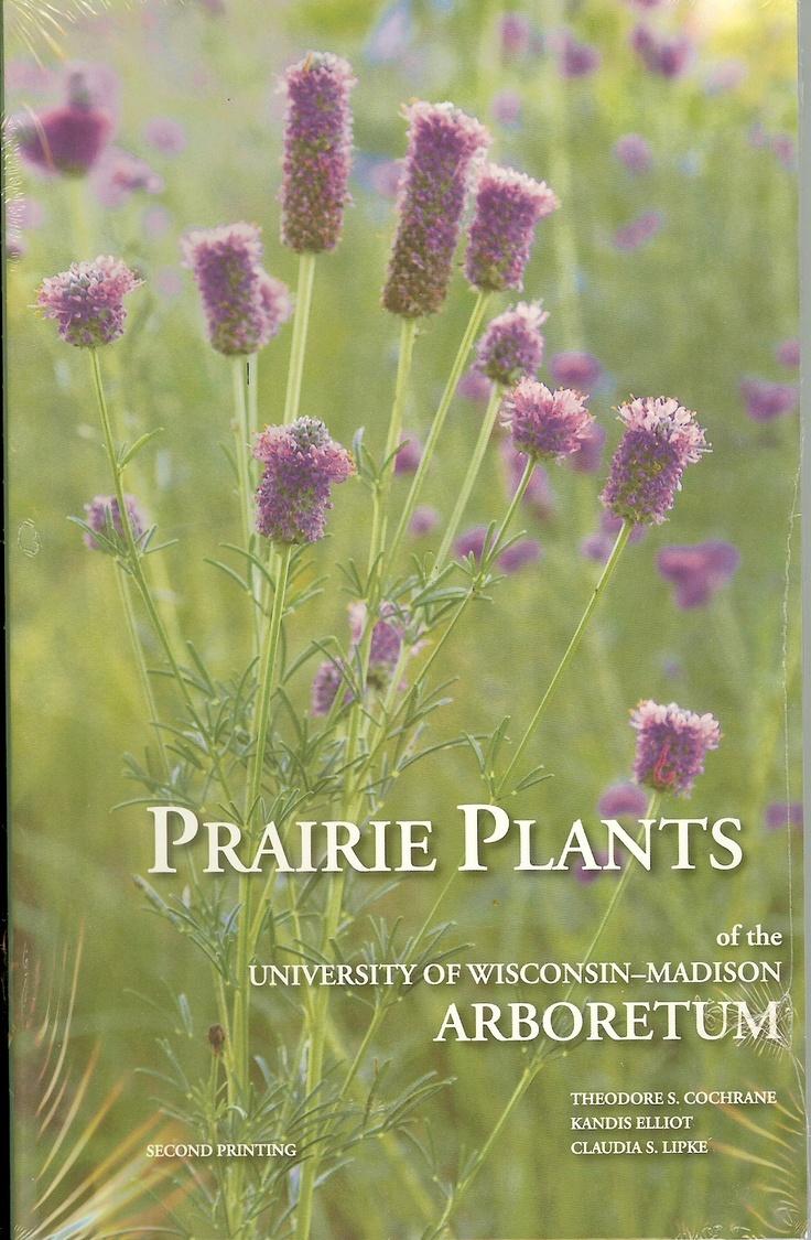 Prairie Plants Of The University Of Wisconsin Madison Arboretum