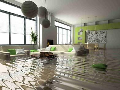When disater strikes the Pristine Service Group's team of Restoration Experts will come to the rescue if you've experienced water damage to your property. http://bit.ly/1HAoIMx