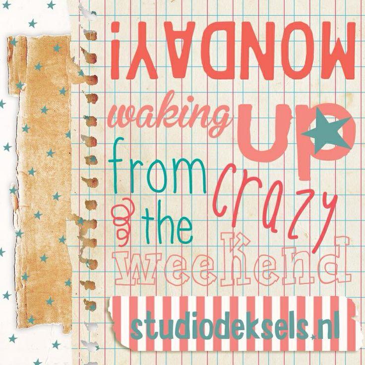 Studio Deksels • Monday! • Waking up from the crazy weekend • Iedere dag een groetje! • Maandag • Hallo