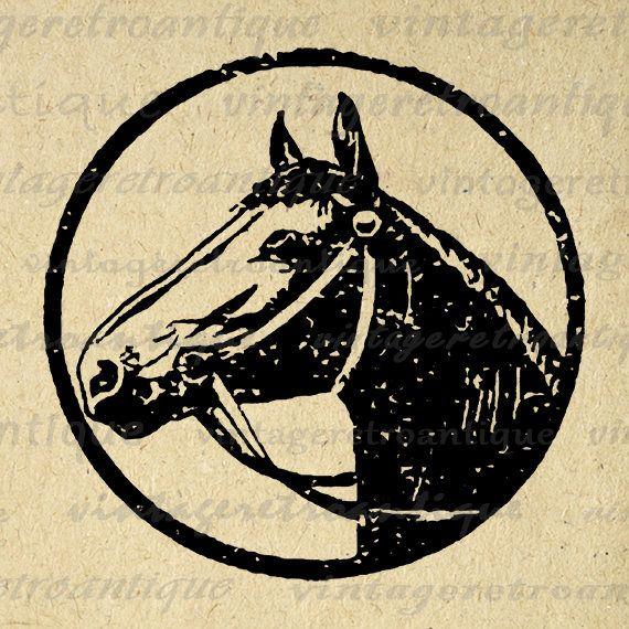 Digital Printable Horse Illustration Digital Horse Graphic
