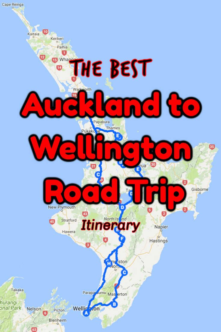 Enjoy An Auckland To Wellington Drive With These Stops In 2020 North Island New Zealand Auckland Road Trip
