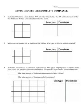 genetics practice problems worksheet incomplete dominance nondominance worksheets students. Black Bedroom Furniture Sets. Home Design Ideas