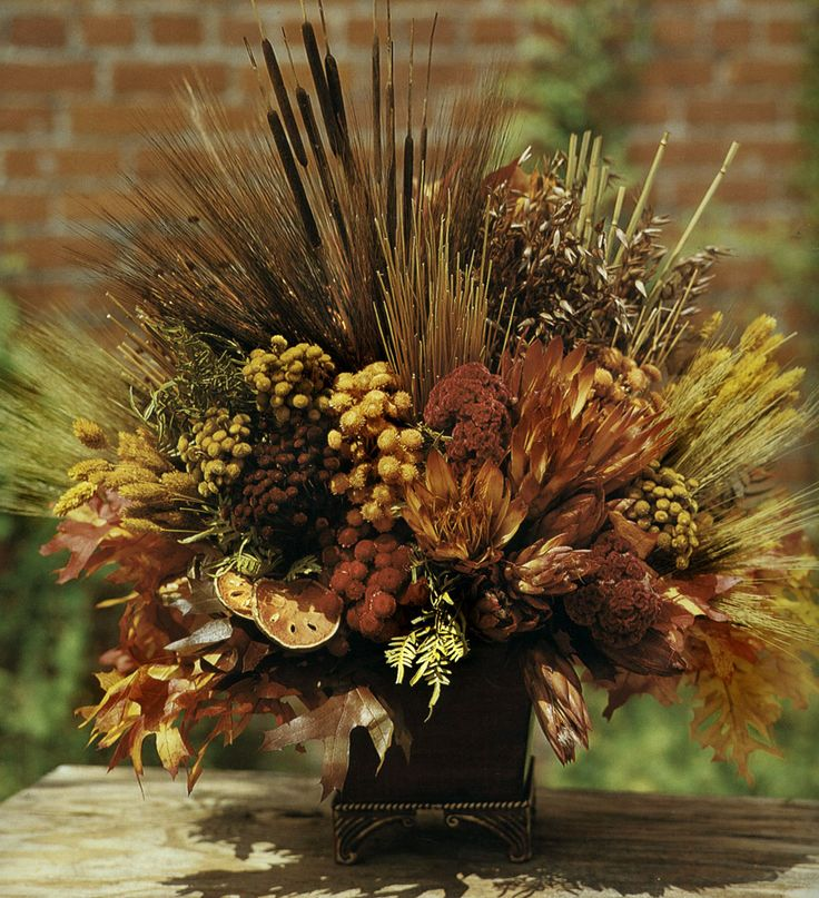 1000+ images about dried flowers on Pinterest