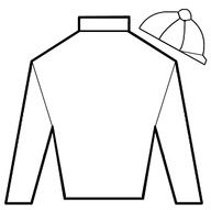 Printable jockey silk