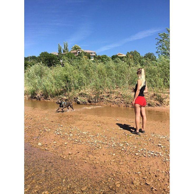 #dontbullymybreed #razorsedge #gottiline #bluenose #pitbull #beutahful #utah #river #gatsby #adventure #dogtra # by kymberly.xo http://bit.ly/AdventureAustralia