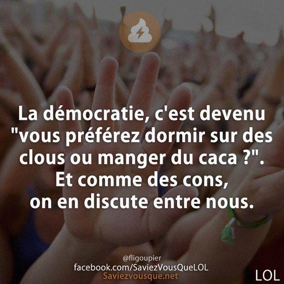 """La démocratie, c'est devenu """"vous préférez dormir sur des clous ou manger du caca ?"""". Et comme des cons, on en discute entre nous.   Saviez Vous Que?   Tous les jours, découvrez de nouvelles infos pour briller en société !"""