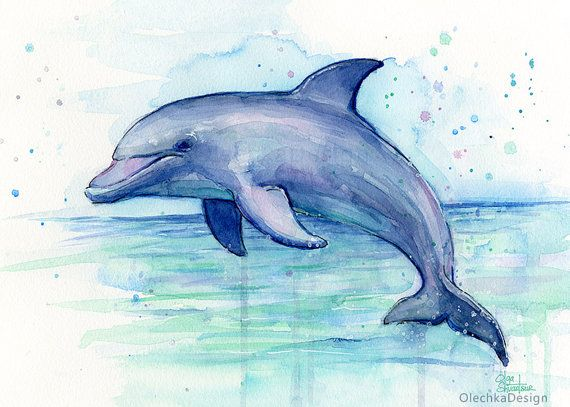 Dolphin Watercolor Art Print Dolphin Painting by OlechkaDesign