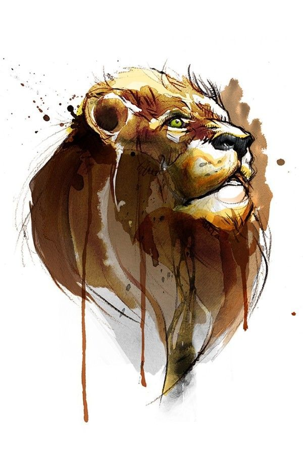 1000 ideas about dessiner un lion on pinterest comment - Comment dessiner un lion ...