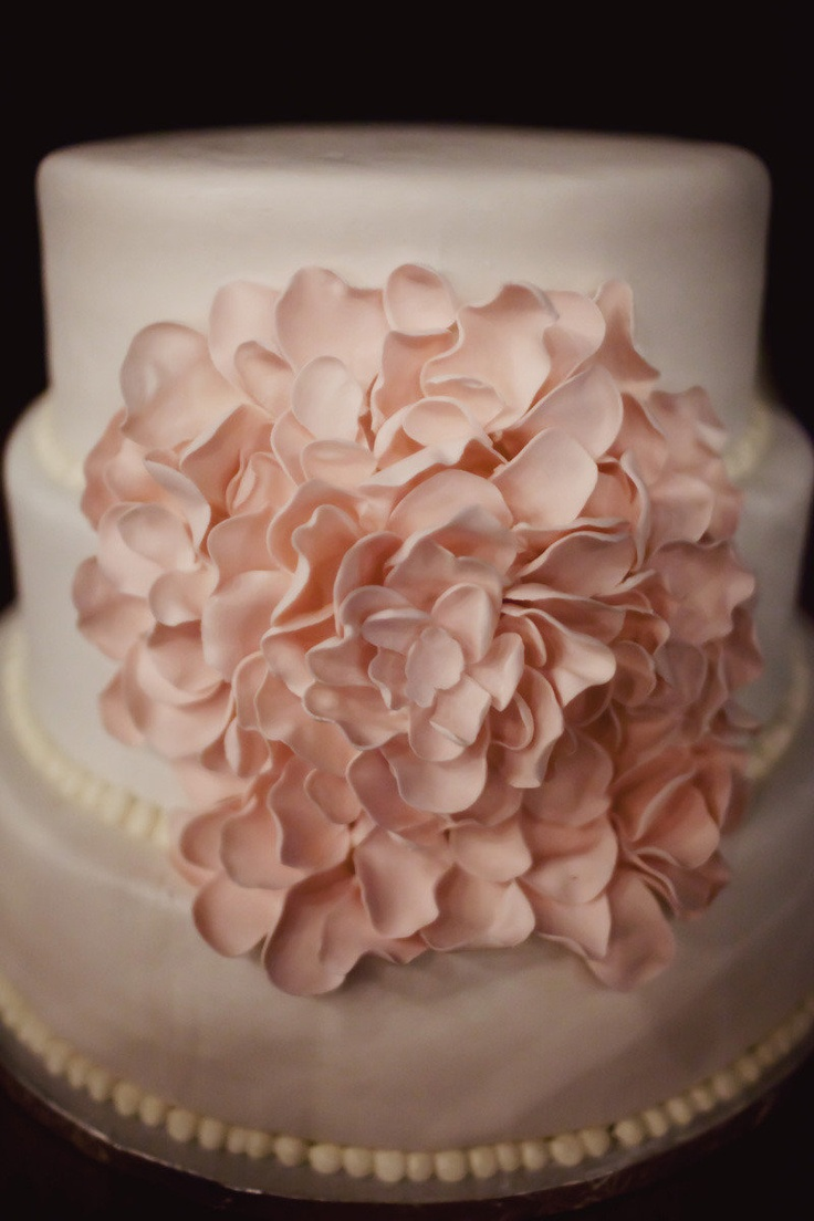 Beautiful cake! from Ever So Sweet Bakery ~  Love the blush tones used throughout this wedding http://StyleMePretty.com/destination-weddings/2012/04/11/charleston-wedding-at-the-gibbes-museum-of-art-by-ashley-baber-weddings/ Photography by ameliaanddan.com
