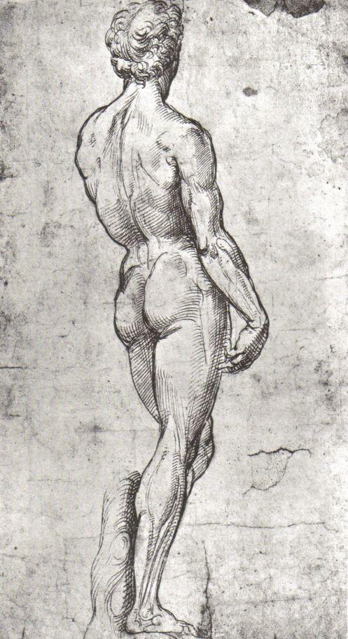 thisblueboy:  Raphael Sanzio (1483-1520), Study of David after Michelangelo