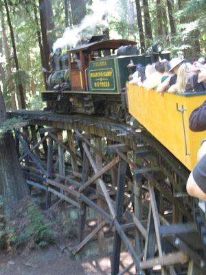 Roaring camp discount coupons