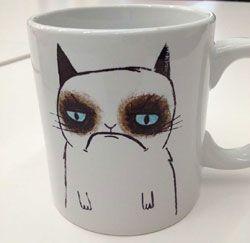 La tasse de Tard, le chat grincheux