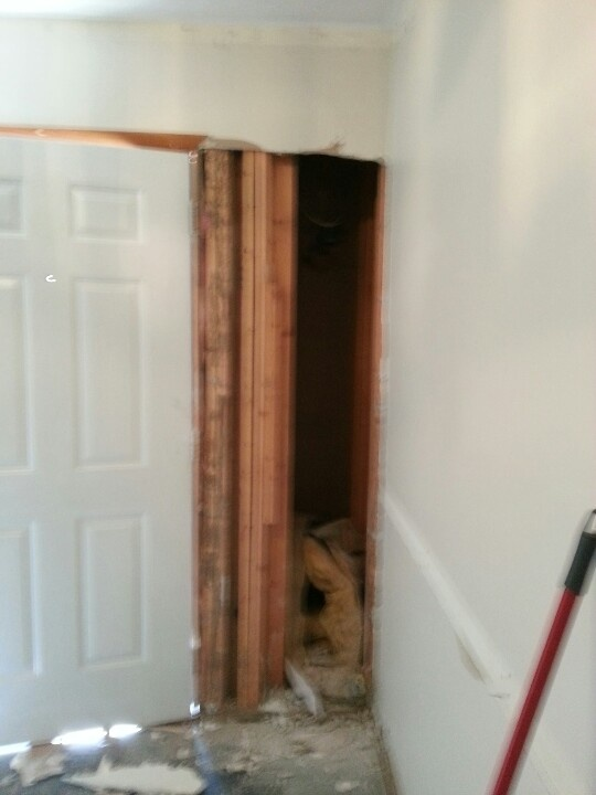 17 Best Images About Termite Damage On Pinterest Home