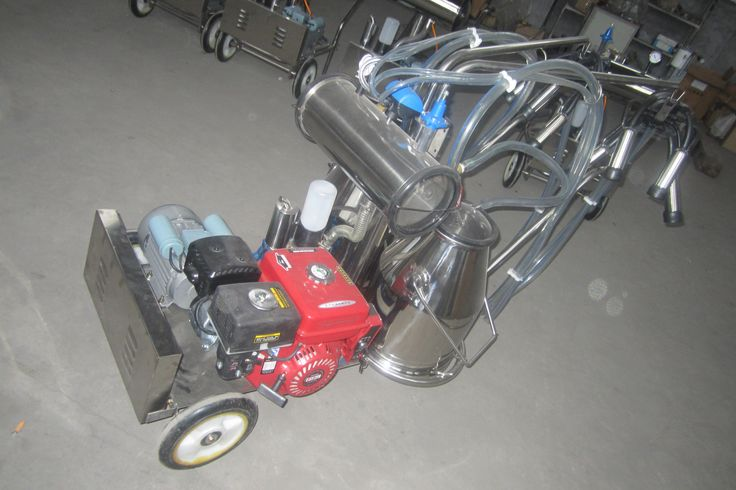 Labor saving Gasoline engine power cow milking machine Double Bucket double cup Vacuum Pump gasoline engine mobile milking machine is an ldeal choice for cows dairy equipments that has no electricity power. 1, Smalle dairy equipments that is suitable for small-scall or personal farm. 2, Price is reasonable and save human cost. 3, Easy to maintain and operate. 4, Lift up working efficiency. 5, Gasoline engine and do not need electricity.