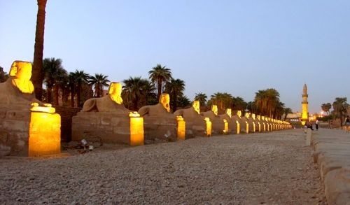 Plan the best Egypt All Inclusive Vacations with EgyptTourInfo.com. There are many resorts and packages available for every region of this famous land.
