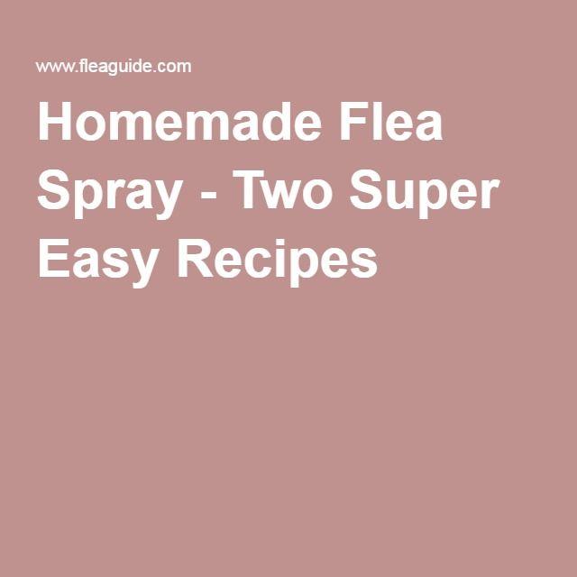 Image Result For Homemade Flea Spray Two Super Easy Recipes