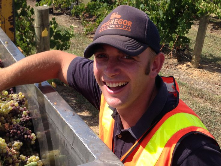 Viticulturist Sean looking pretty happy with the quality of the Noble Riesling.