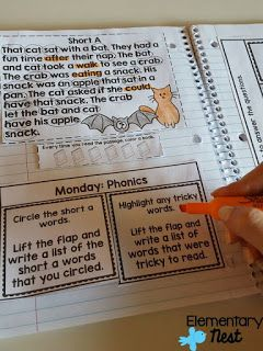 Weekly Interactive Reading Notebook for ELA skills- comprehension, phonics, grammar, writing, vocab, and more! One ELA skill a day