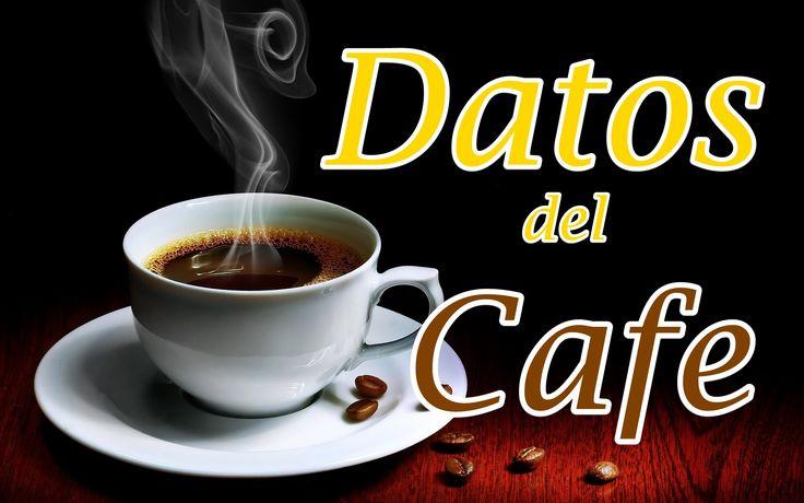 10 Curiosidades del cafe