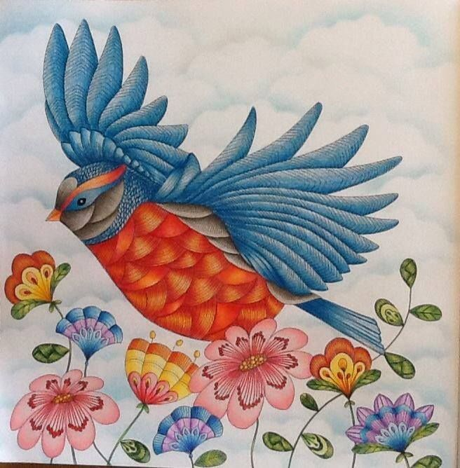 Coloring Ideas Flying Bird Colour TherapyAdult ColoringColoring BooksColouringDoodle ArtAnimal KingdomJoanna