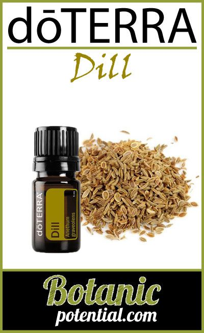 DILL Essential Oil by doTERRA