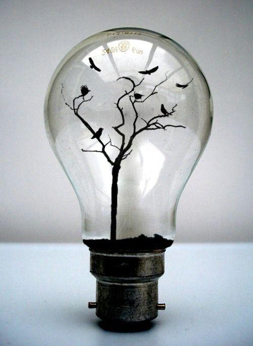 lightbulb, tree