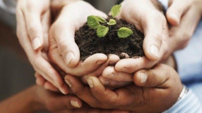 Desenvolvimento econômico: o que é e por que varia tanto | #CarlosPio, #Desenvolvimento, #Desigualdade, #Economia, #Estado