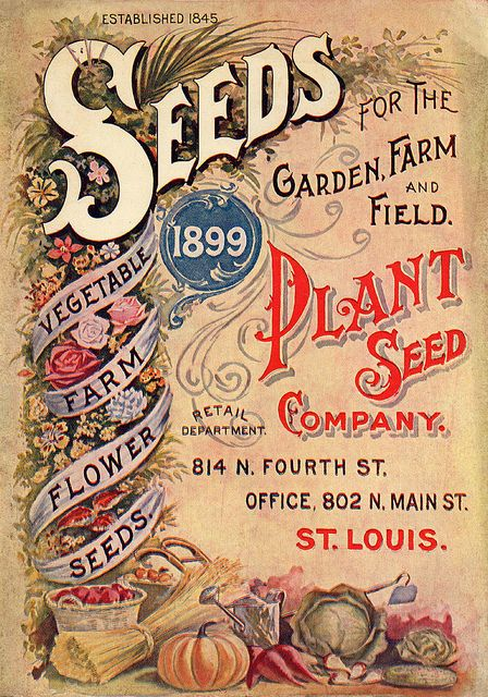 Vintage Seed Catalog - 1899 Seeds for the garden and farm, plant Seed Company, St. Louis
