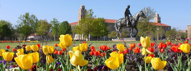 Texas Tech University System learns the value of database-level ...