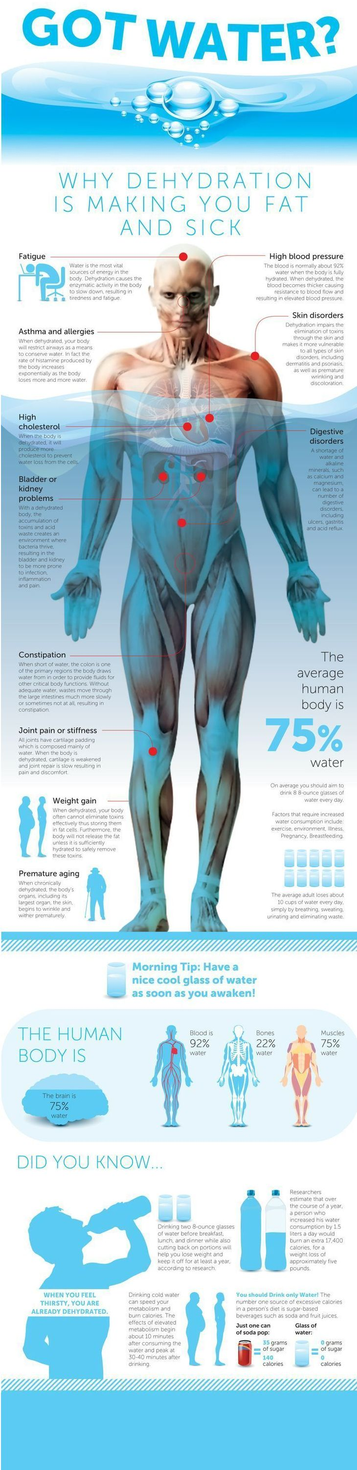 why water is so important for your body. fitness, weight loss, health