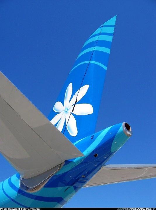 Air Tahiti Nui - Tiare flower Logo.  http://www.airtahitinui-usa.com/
