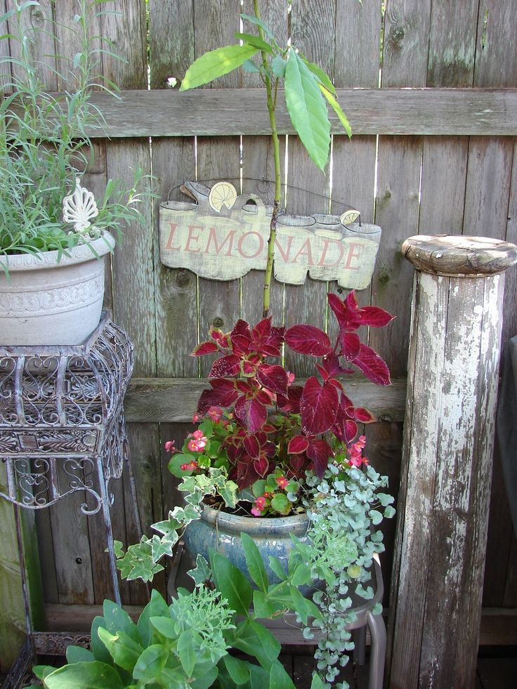 23 best Shabby Chic Gardens images on Pinterest | Outdoor ... on Chic Patio Ideas id=71950