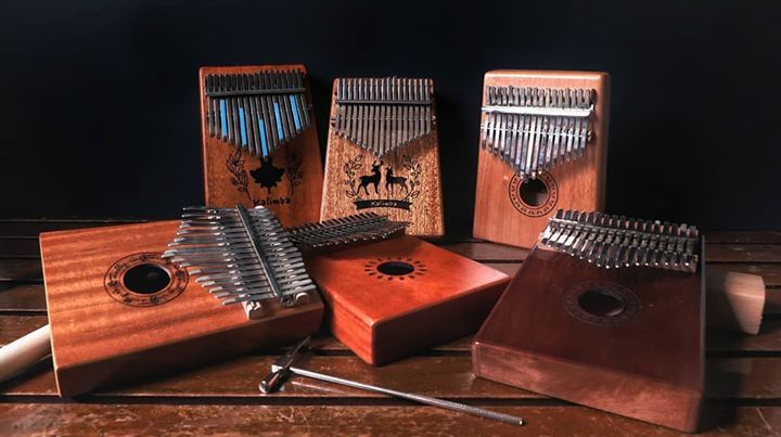 Here S A Family Photo Of The Kalimba S That We Currently Have All Available At Lazada And Shopee Family Photos Clifton Photo