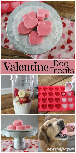 Homemade Valentine Dog Treats