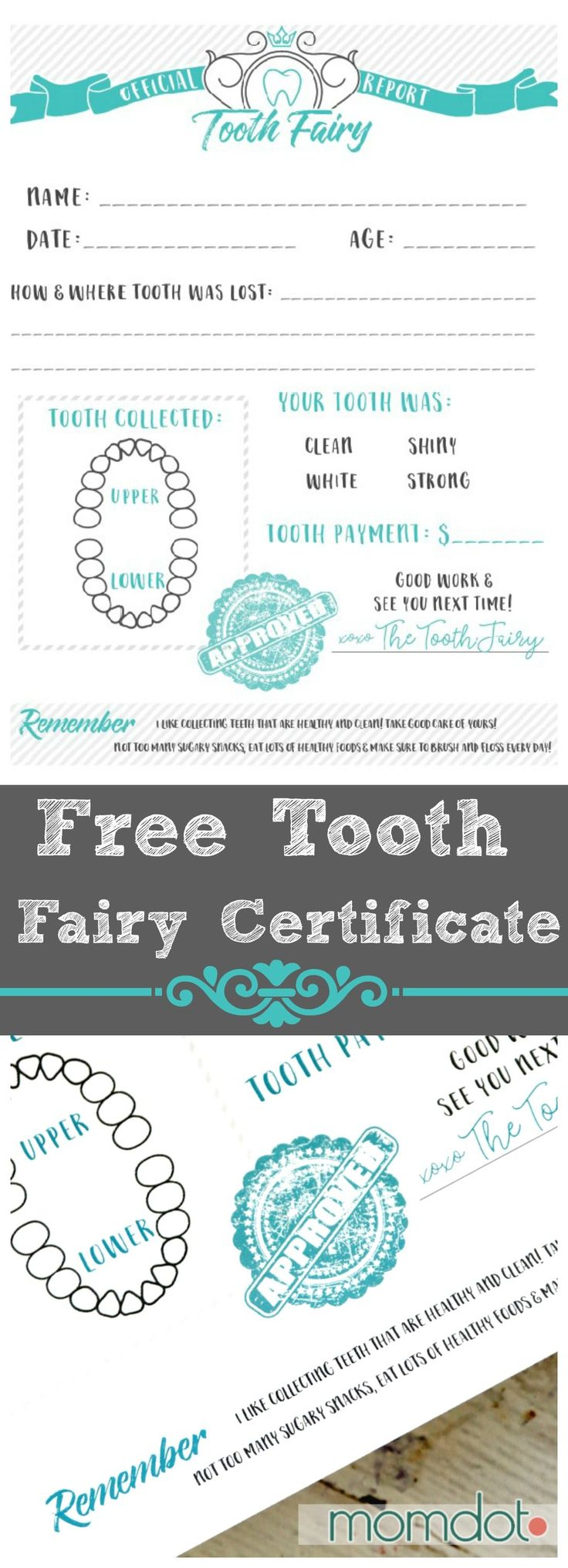 Tooth Fairy Printable Certificate - Free Printable Letter from the Tooth Fairy, instant print out and adorable for kids!