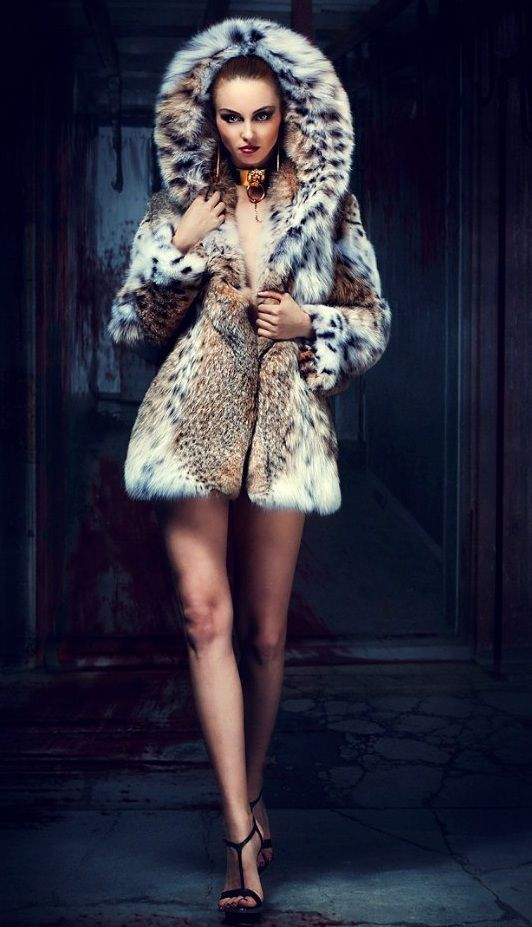 Fur, Femdom and Maybe Some Shemales Too : Photo | Меха ...
