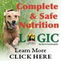 Nutritional Herbs Your Dog Shouldn't Be Without   Dogs Naturally Magazine