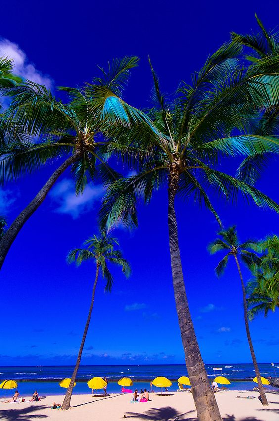 Kuhio Beach, Waikiki, Honolulu, Oahu, Hawaii USA. #hawaiirehab www.hawaiiislandrecovery.com