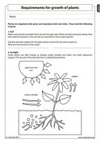 requirements for growth of plants natural science worksheet grade 4 life and living. Black Bedroom Furniture Sets. Home Design Ideas
