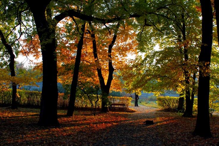 The Botanic Gardens in Cluj-Napoca