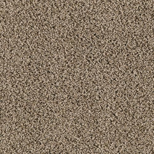 60 Best Images About Cheap Carpet In Dallas On