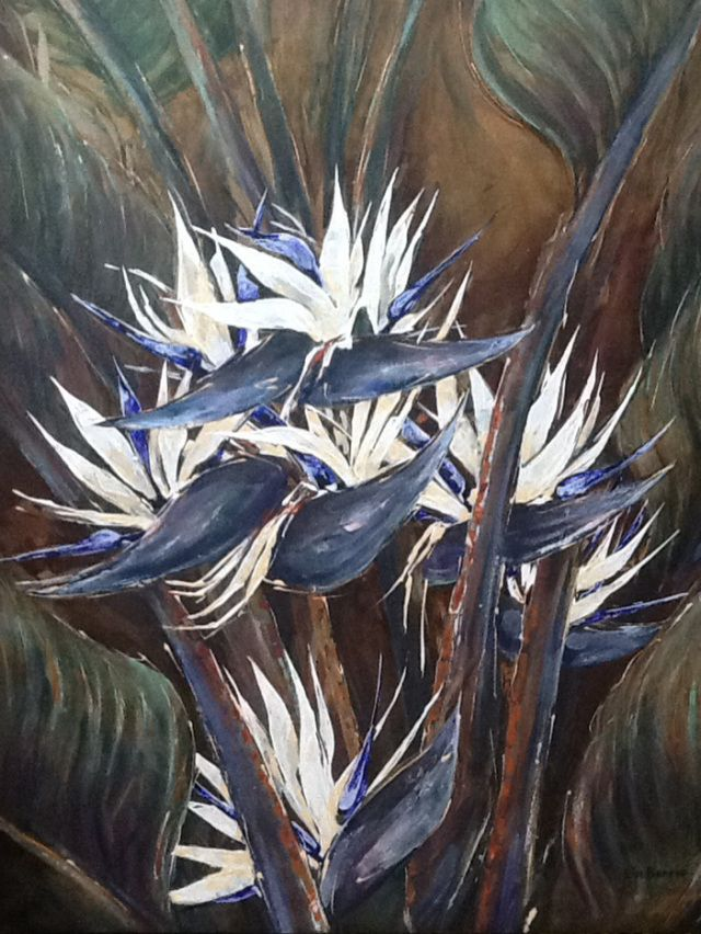 Strelitzia nicolae, oil on canvas by Lin Barrie, 130 x 100 cm