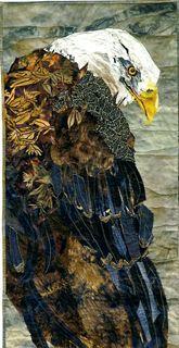 eagle by Joan Colvin