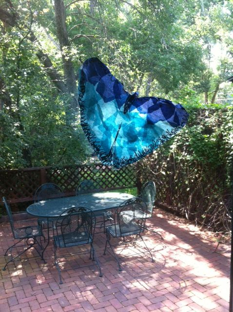 The Razzle Dazzle of the Blue Morpho Butterfly