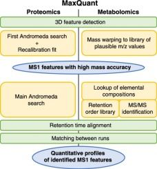 #COIB: What computational non-targeted mass spectrometry-based metabolomics can gain from shotgun proteomics