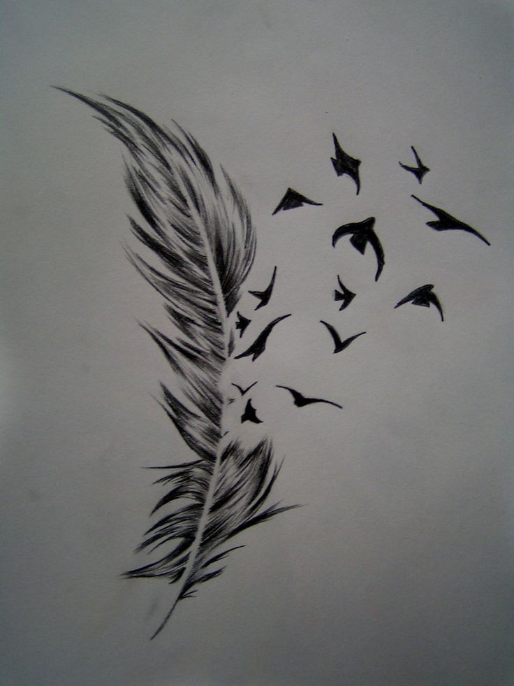 http://tattoomagz.com/feather-and-bird-tattoo-meaning/tattoo-center-bird-crow-feather-tattoo-designs-3/
