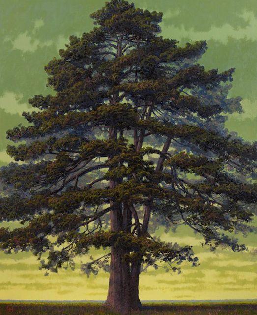 Francis Hamel - Artist (tree paintings)