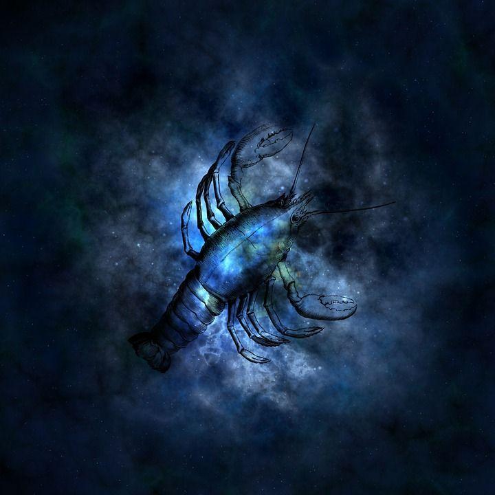Darmo ilustracja: Horoskop, Astrologia, Zodiak, Rak - Gratis obraz na Pixabay - 644862