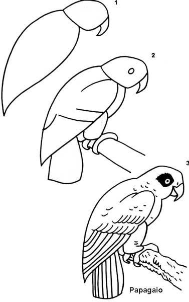 desenhos passo a passo de animais - Pesquisa do Google